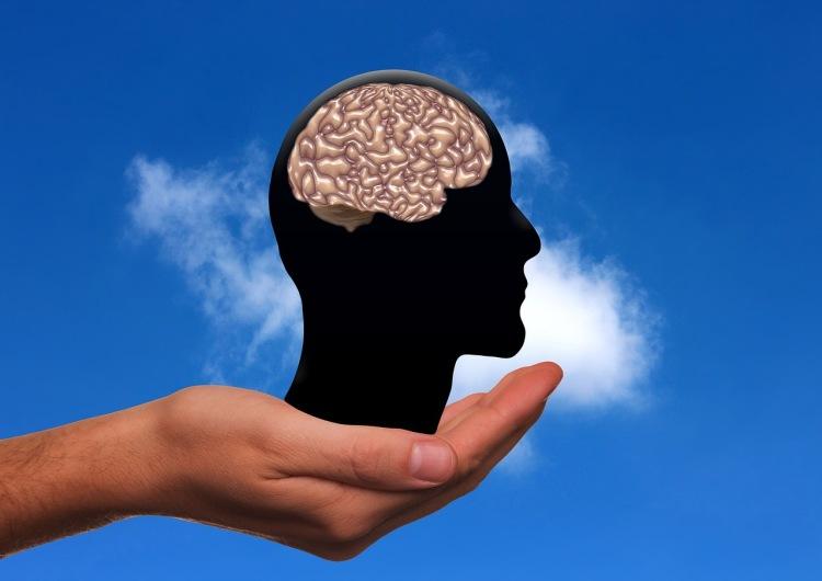 Ruka drží hlavu s mozkem - ilustrace
