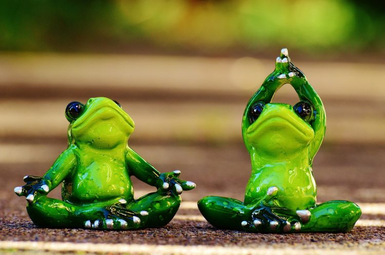 Žáby cvičí jógu