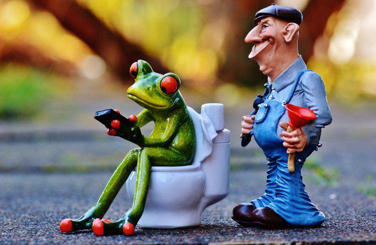 Žába na záchodě a instalatér