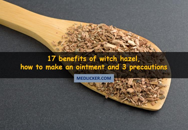 17 Unexpected Benefits of Witch Hazel