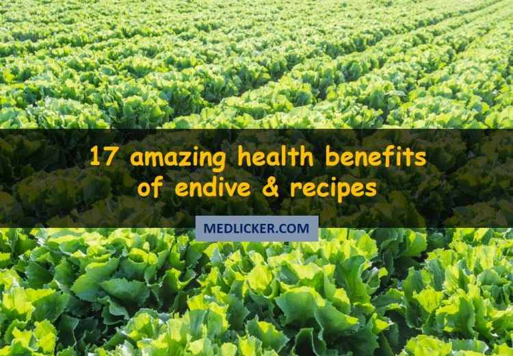 17 Unknown Benefits of Endive